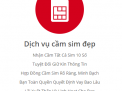 Dịch vụ cầm sim điện thoại